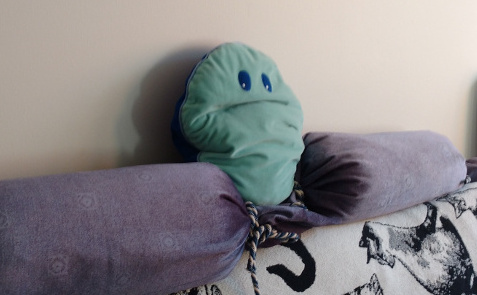 Photo of grumpy-looking pillow.