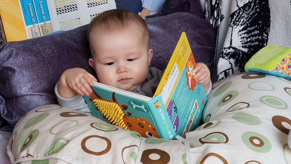 Photo of baby 'reading' a book.