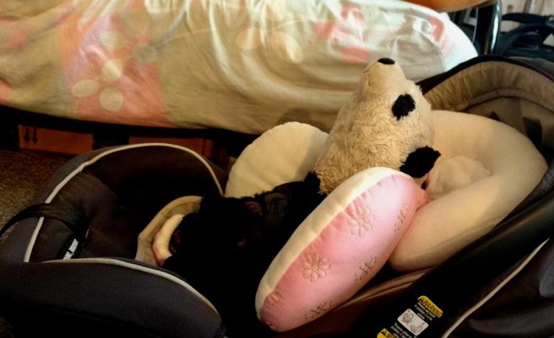 Photo of Carl II testing baby Baobao's car seat on August 18, 2019.