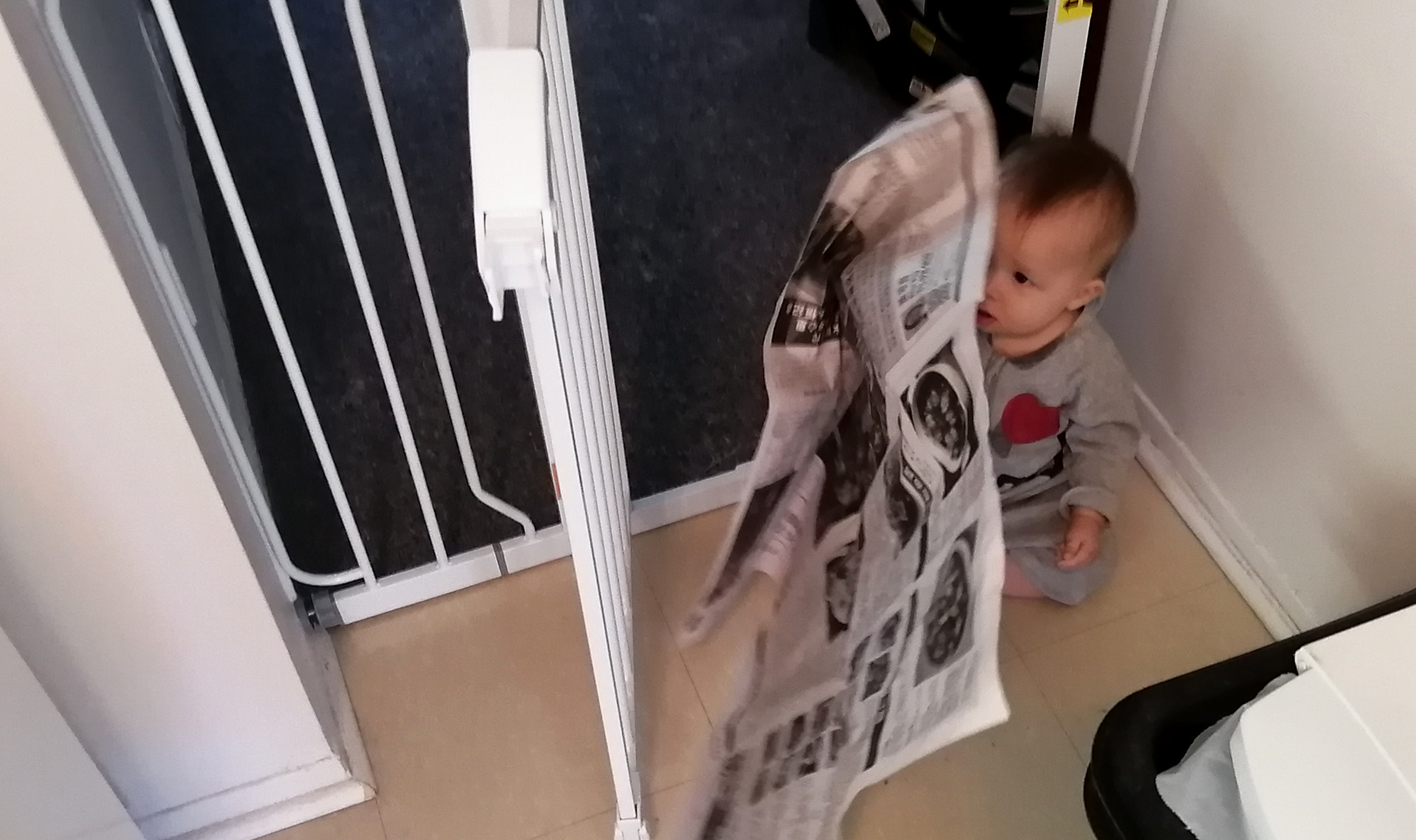 Photo of Baby Baobao with newpaper pilfered from the recycle bin.
