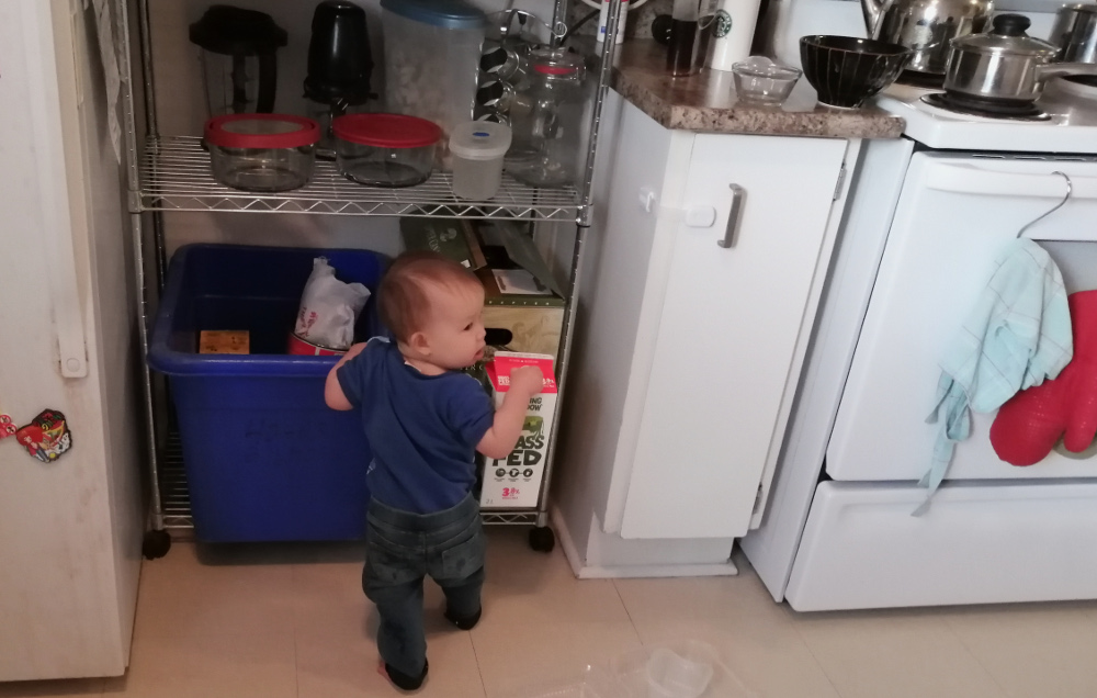 Photo of toddler Baobao holding a milk cartoon in front of blue box and beer cases on wire shelf, November 22, 2020. Photo by Mama Raven.